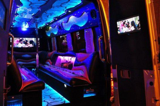 partybus-warsaw-12pax